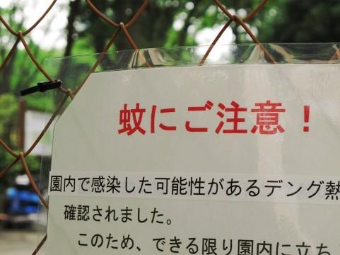 2014-09-15-20140915_sirabee_01.jpg