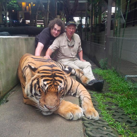 2014-09-15-tiger4.jpg