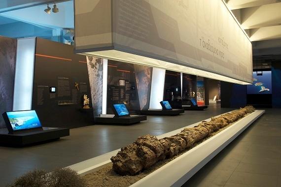 2014-09-16-PetrifiedMuseum.jpg