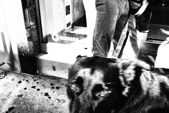 2014-09-20-DogandHisWalker.jpg