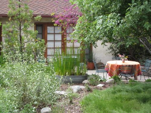 southern california native garden