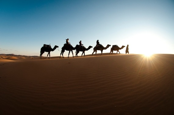 2014-09-21-AgnieszkaCzesrka.CamelCaravan.Morocco.Sm.jpg