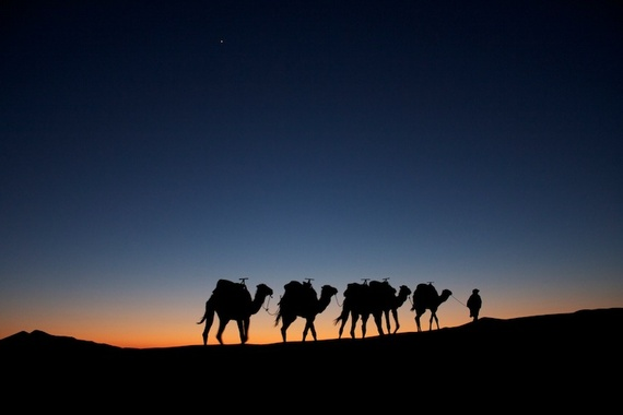 2014-09-21-AlexRos.2.CamelsAtDuskErgChebbi.Morocco.750px.jpg