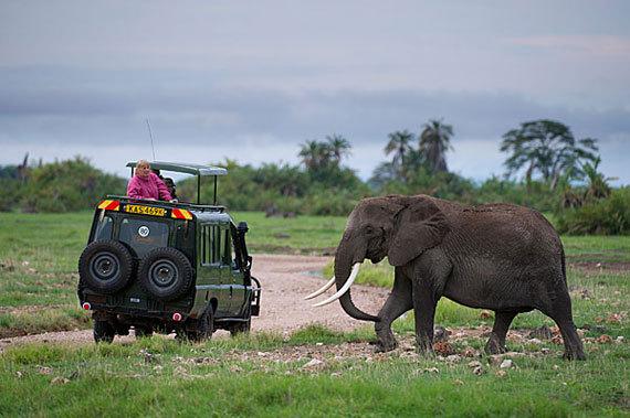 2014-09-22-safariinKenya570px.jpg