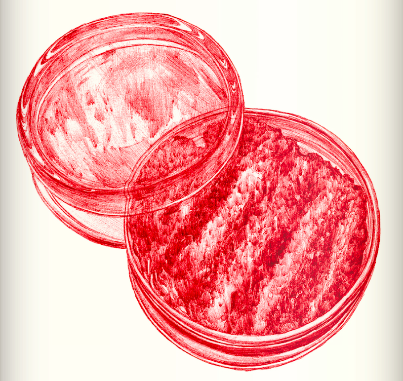 in vitro meat essay Start studying essay learn vocabulary, terms, and more with flashcards,  stem cells make their own meat in a petri scale, combining - in vitro burger 4.
