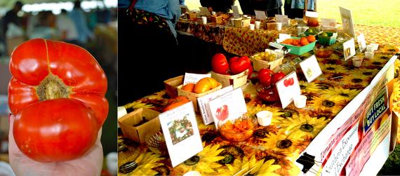 2014-10-01-Tomatoes.jpg