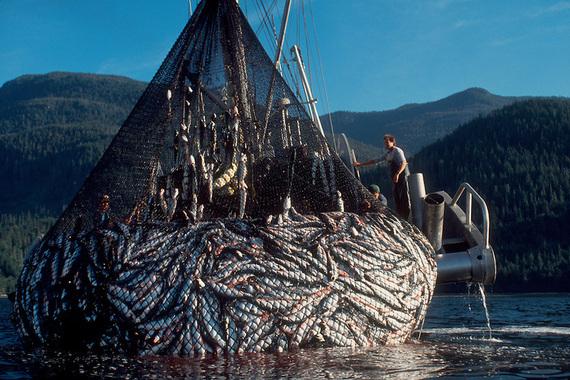 2014-10-02-FishingBoat.jpg