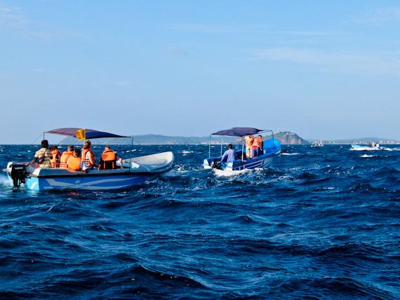 2014-10-04-WhaleWatchingTrincomalee.jpg