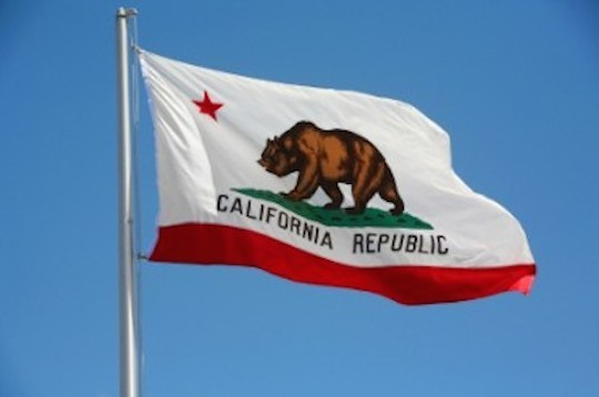 2014-10-04-californiaflagbear.jpg