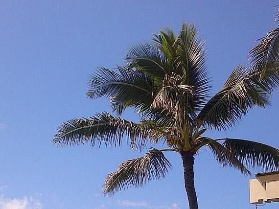 2014-10-07-3.Weather.jpg