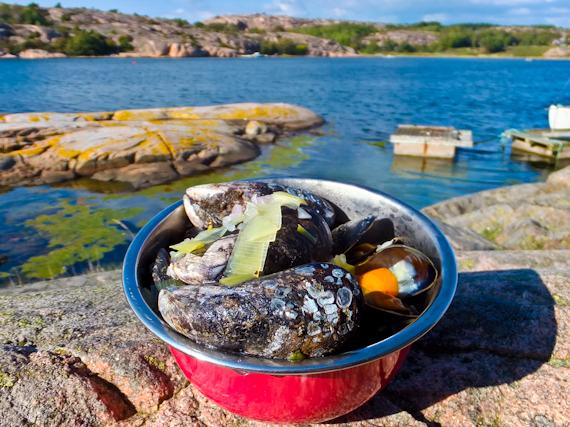 2014-10-11-Mussels.jpg