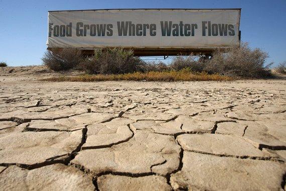 2014-10-15-DroughtCaliforniaEarthDrReeseHalter