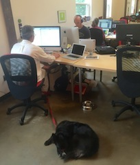 2014-10-17-Tigerlabs2.jpeg