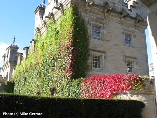 2014-10-18-Floors_Castle_exterior.jpg