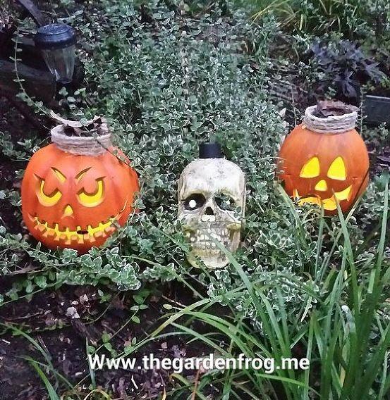 2014 10 20 4jpg solar light halloween decorations - Solar Halloween Decorations