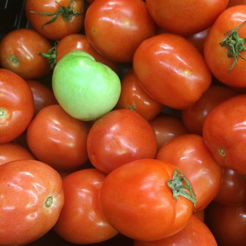 2014-10-23-Tomatoes.jpg