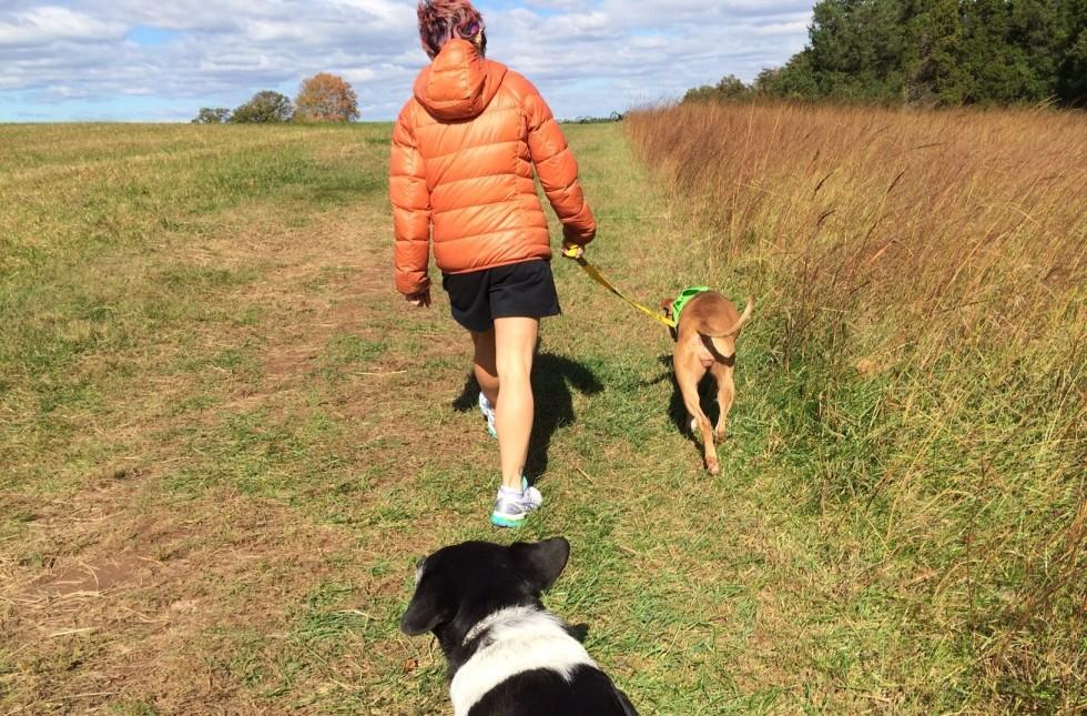 2014-10-24-hike.jpg