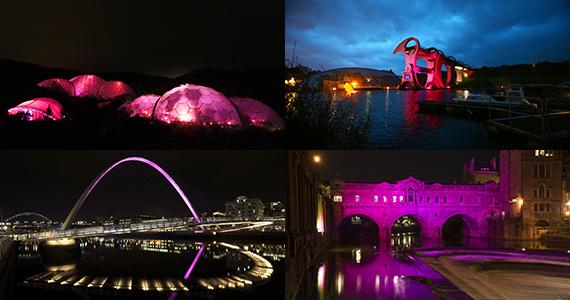 2014-10-24-img570_pinklandmarks.jpg
