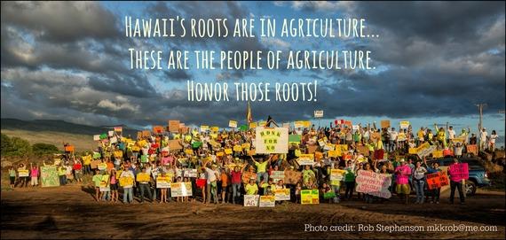 2014-10-27-hawaiiroots.jpg