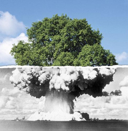 let s make peace not war huffpost