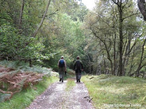 2014-10-30-Caledonian_Canal_Cruise_7_Walking_In_the_Woods.jpg