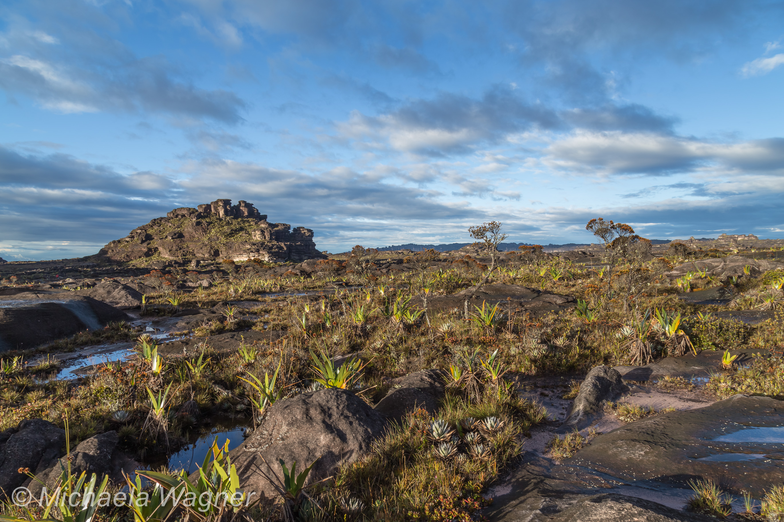 The Unforgettable Trek Up Mount Roraima Or What I Did