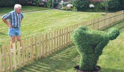 2014-10-30-neighborssmall.jpg