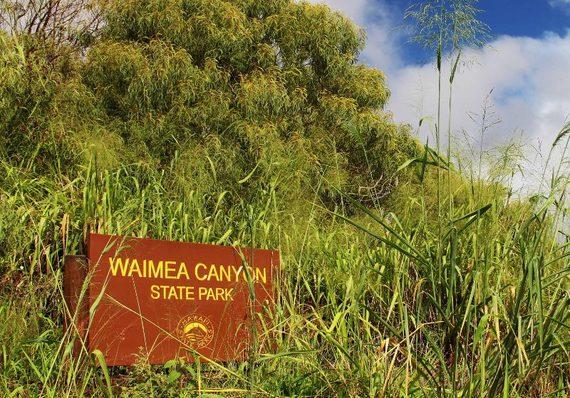 2014-11-04-WaimeaCanyonsign800x559.jpg