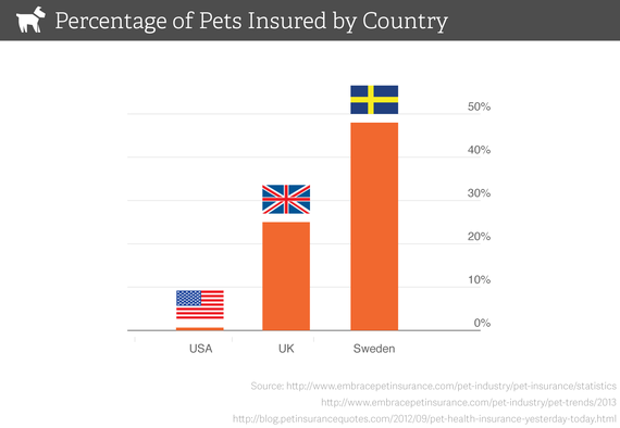 The Biggest Mistake 99 Percent Of All Pet Owners Make