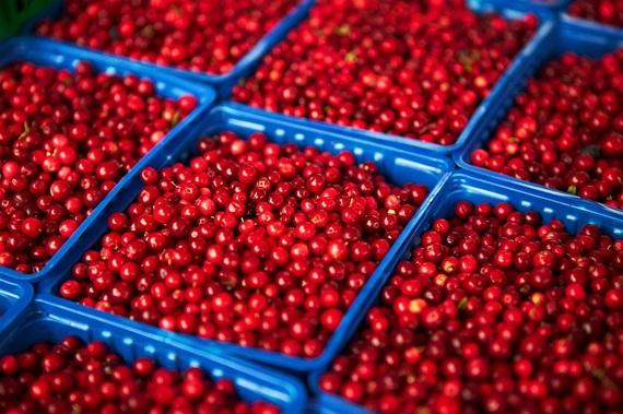 2014-11-05-lingonberries.jpg