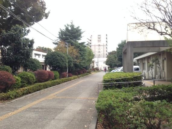 2014-11-06-141106_shunotokita_02.jpg