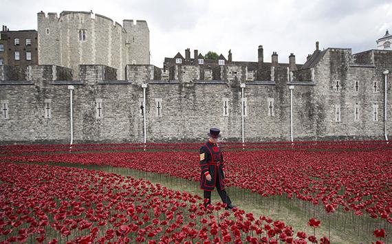2014-11-06-poppies_1.jpg