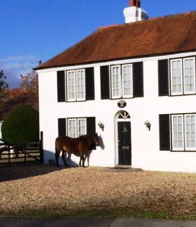 2014-11-07-horsehouse.jpg
