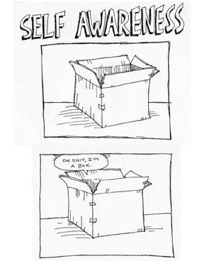 2014-11-10-SelfAwarenessImabox.jpg
