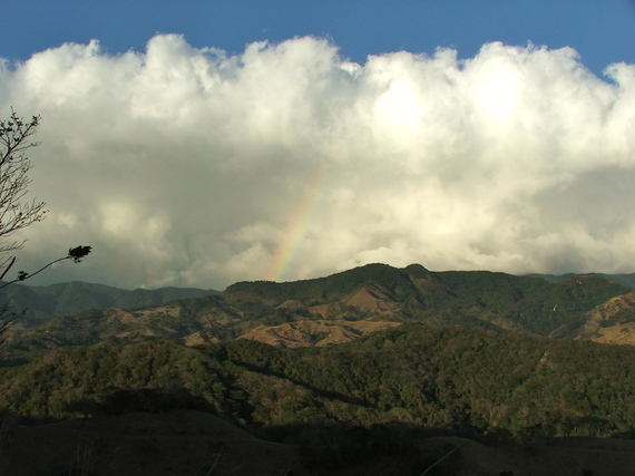 2014-11-11-MonteverdeNationalParkCostaRica.jpg