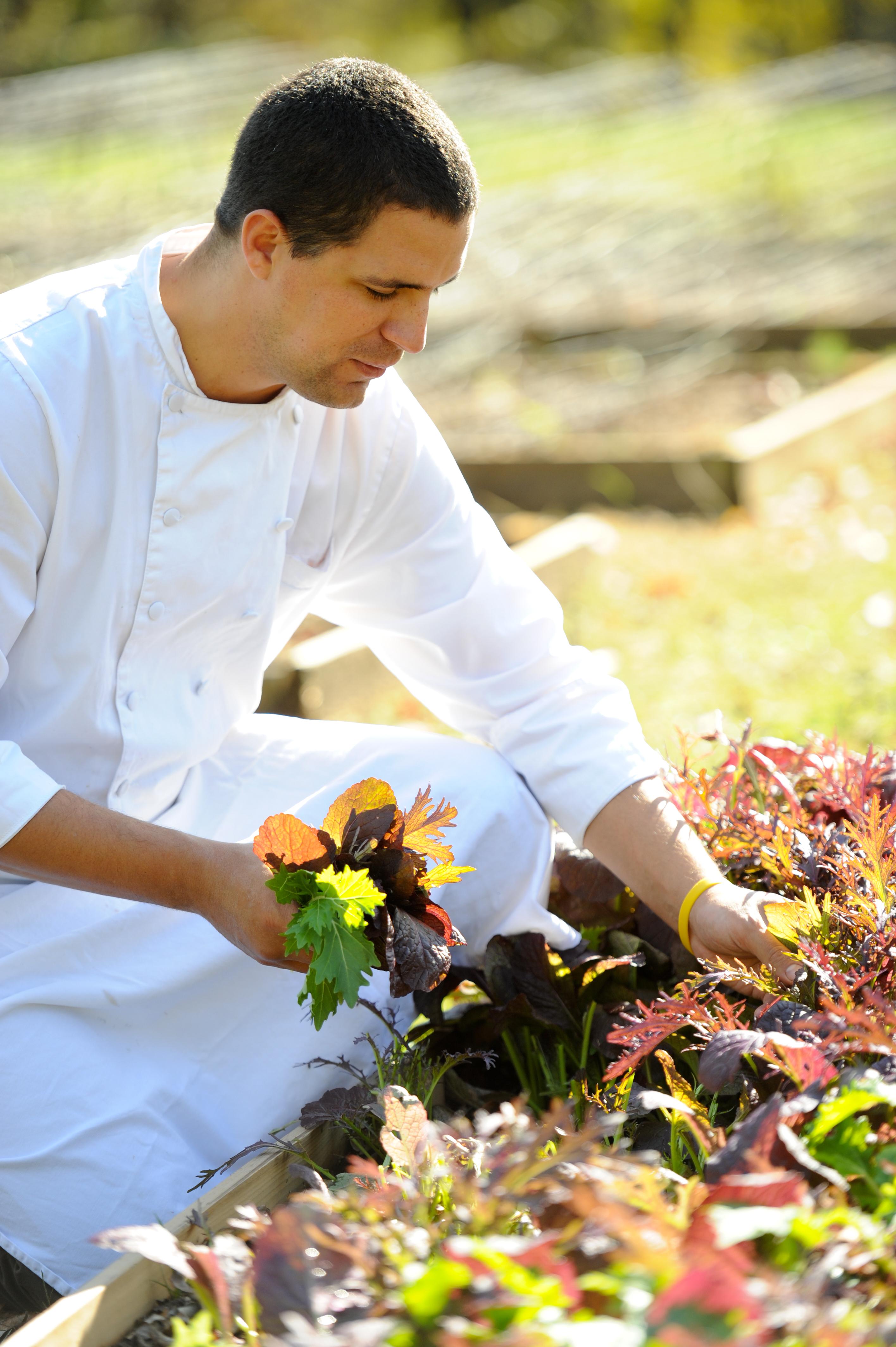 Four Virginia Hotels Focus On Farm To Table Menus Huffpost