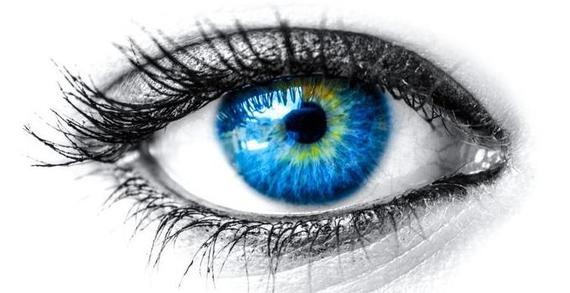 give thanks for your eyes  7 amazing facts