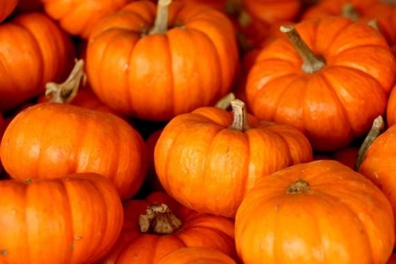 2014-11-12-pumpkinsstacked.jpg