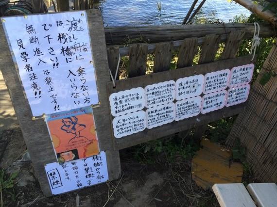 2014-11-13-20141113_sirabee_05.jpg
