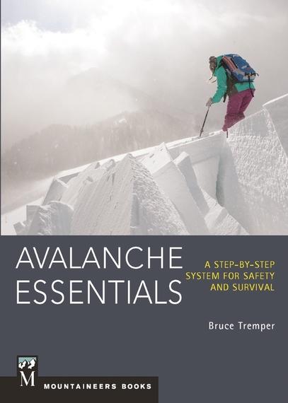 2014-11-14-AvalancheEssentials1.jpg