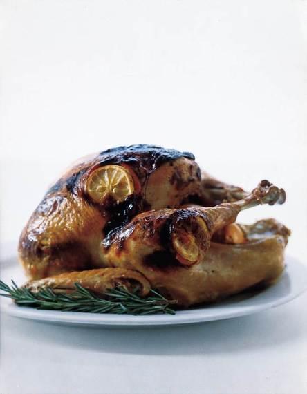 2014-11-19-TurkeyRomuloYanesfree.jpg