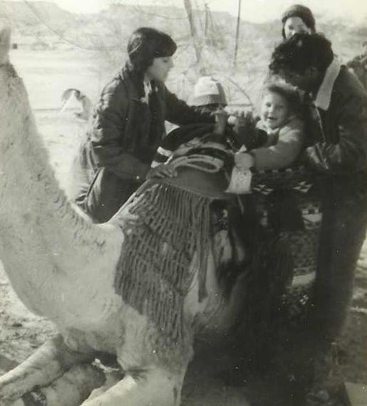 2014-11-20-camel03.jpg
