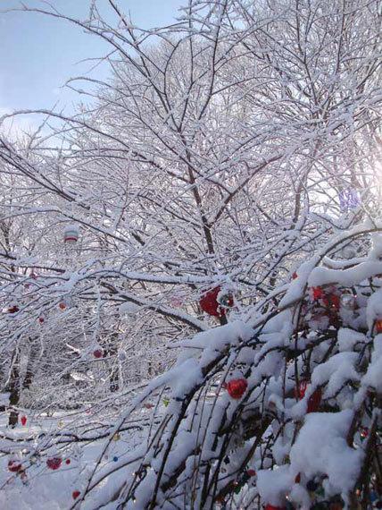 2014-11-23-ChristmasDecorations.jpg