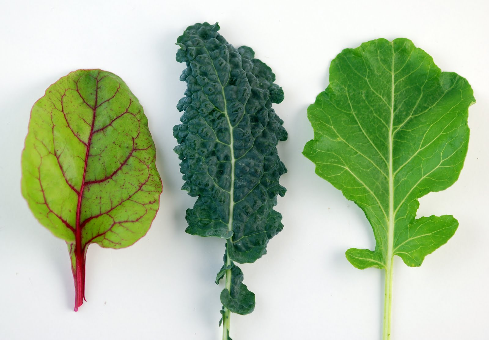 advantages of green vegetables No, not green as in earth friendly (though that's important too), but green as in addin go green - fruits & veggies more matters : health benefits of fruits & vegetables media.