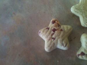 2014-11-24-biscuit.jpg