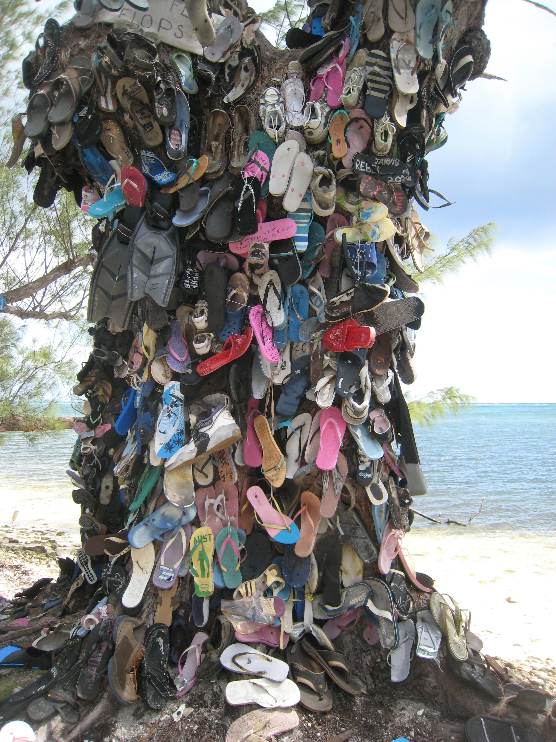 Cayman Island Big Tree Bbq