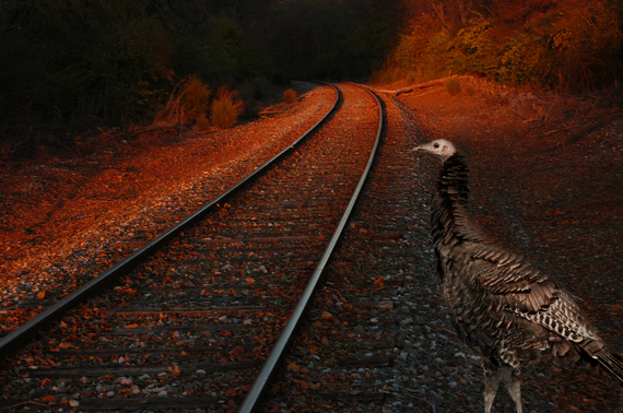 2014-11-27-RailroadTurkeyorigin.jpg