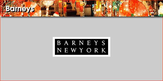 2014-12-02-Barneyspanel1.jpg