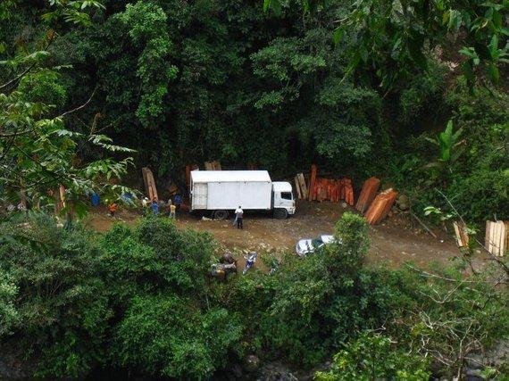 2014-12-03-Ecuador_illegallogging.jpg