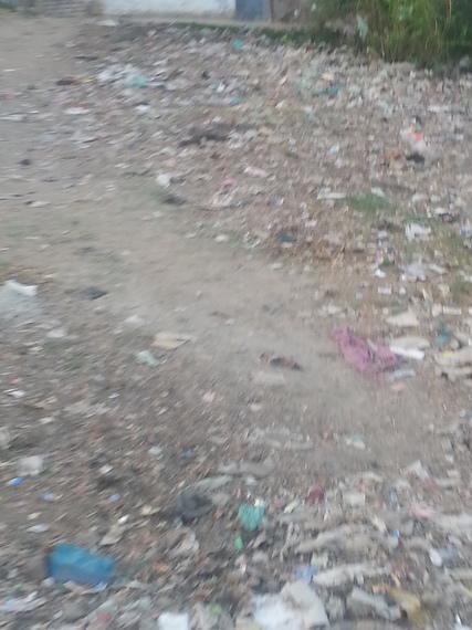 2014-12-05-trash_044356.jpg